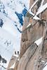 (Hervé KERNEIS) Tags: snow france ice alpes rocks altitude glacier neige chamonix alpinisme montagnes frenchalps granit alpinist rhônealpes alpinistes arêtedescosmiques cordée 3842m hautemontagne nikond700 nikkor70300mmf4556 hautesavoie74