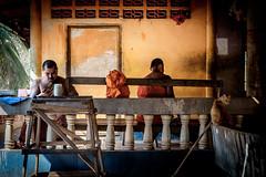 Deux moines et un chat (francois werner) Tags: voyage thailande 2016 moine