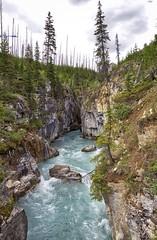 Marble Canyon (John Andersen (JPAndersen images)) Tags: trees mountains river bc glacial marblecanyon