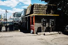 ES 184 (Dominic Bugatto) Tags: lakeshoreavee harbourfront endangeredspeciesseries toronto torontotopography streetphotography fujifilmx100s 2016