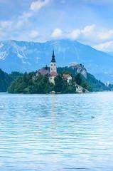 Bledi-t - Lake Bled (Adam Tomk) Tags: slovenia bled lake t mountain hegy church templom island sziget