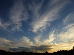Summer clouds..x (lisa@lethen) Tags: mares tails cirrus summer skies blue sun cloud weather nature outdoor