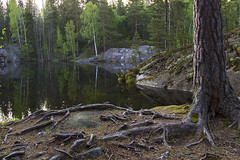 zen in finnish (Sergey S Ponomarev) Tags: sergeyponomarev canon 600d ef24105f40l nature natura finland lake suomi forest trees wood stone texture may maggio travel journey trip paysage paesaggio zen finnish europe europa roots 2014