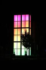 IMG_1207 (mudsharkalex) Tags: california dublin dublinca coloredlights colouredlights
