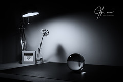 More A Study Of Light Than A Study With Light (Gilmour-Photography) Tags: blackandwhite bw lamp light crystalball crystal ball sphere spherical flower shadow desk study desklamp desklight