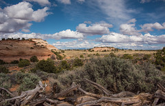 Aztec Butte, Canyonlands NP (tr0mbley) Tags: canyonlandsnationalpark canyonlands national park utah moab desert sky clouds butte aztec nikon d810 hiking backpacking camping ngc