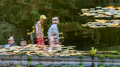 The Lily Fair (John Penberthy LRPS) Tags: johnpenberthy nikon d750 reflection water lily inverted upsidedown people outside