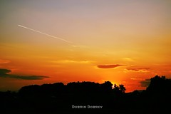 Sunset over Pazardzhik, Bulgaria /31.05.2016/ (d_dobreff) Tags: sunset sky serene outdoor clouds cloud nikon d3300 photography sun orange red city town landscape urban airplane trails smoke trees silhouette beautiful pazardzhik pazardjik bulgaria park