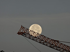 In the crane (Tom@125) Tags: moon lune astrophotography astronomy explore crane photo