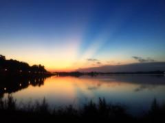 Sunrise Rays (DASEye) Tags: daseye davidadamson iphone 52in2016 52in2016challenge challenge sunrise dawn rays beams sunbeams