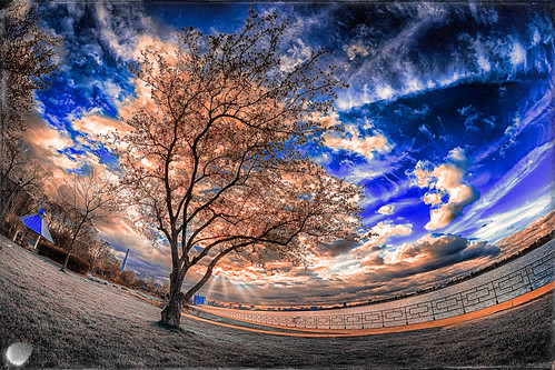 """Fisheye Distorted Sunset • <a style=""""font-size:0.8em;"""" href=""""http://www.flickr.com/photos/76866446@N07/17145519640/"""" target=""""_blank"""">View on Flickr</a>"""