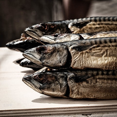 Smoked mackerel (Boudewijn Vermeulen) Tags: feest fish smoke traditional contest tourist tradition festivities monnickendam publ classicchrome