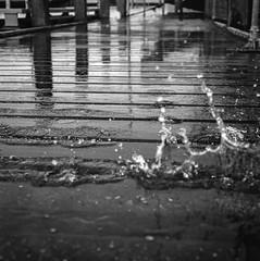 Splash (chipsmitmayo) Tags: mamiya c330 professional f sekor 80mm f28 ilford panf 50 film analog rodinal adonal 150 selfdeveloped selbstentwickelt mittelformat medium format square 6x6 rollfilm breskens zeeland niederlande nordsee meer north sea hafen harbour fischerei schiffsbau steg flut anleger boote schiff hochwasser gezeiten spritzer wasser