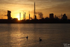 0D6A1692 - orica sunset (Stephen Baldwin Photography) Tags: sunset water birds clouds landscape industrial waterfront australia nsw stockton orica