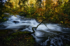 Millstone River in fall (mysticislandphoto) Tags: nanaimo millstone fall autumn colours vancouver island waterfalls