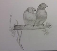 Vgel (loulila71) Tags: sketch watercolour draw bleistift tier aquarell schwarzweis sketchaday