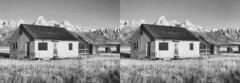 Houses on Mormon Row (Shaun Nelson) Tags: blackandwhite bw blackwhite stereoscopic 3d stereo grandtetons tetons tdc mormonrow utfp stereovivid tdcstereovivid utahfilmphotography utahfilmphotographycom