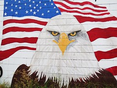 Despite the weeds still a strong image. (kennethkonica) Tags: wallart painting mural flag americanflag color eagle baldeagle red white blue canonpowershot canon wall brick global random hoosiers outdoor marioncounty midwest america american usa indiana indianapolis indy stars stripes patriotic oldglory catchy weeds