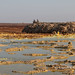 Dallol landscape with military protection