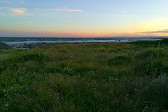 Day 26 saltstein (Jostein Nilsen Photography) Tags: huaweip9 saltstein landscape nature horizon snapseed ocean