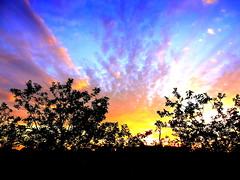 """Big Bang"" (New York Sunset) (dimaruss34) Tags: newyork brooklyn dmitriyfomenko image sunset"