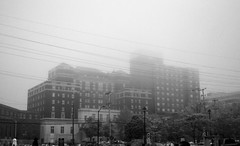 The Westin Nova Scotian (John Bense) Tags: hotel building architecture fog rain blackandwhite monochrome line lines wires telephonewires sky gray westin halifax nova scotia novascotia canada street city urban
