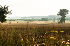 IMG_0977 (Sakuto) Tags: landscape field view poland europe eastcentraleurope nature