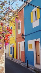 Summer (AnaAyana) Tags: colours yellow street summer colourfull colorfull windows flowers door