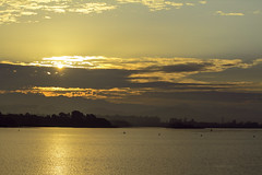 IMG_3990 (Rambonp love's all) Tags: sukhnalake chandigarh birds goose sunrise sun sunrays blue red yellow green water reflectiontrees sky clouds nature landscape wallpaper paradise silhouette mountains morning india  atthecrackofdawn  canoeing sportsman sports rowing