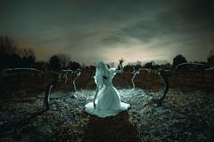 El despertar de la llorona (Fotgrafo - Comunicador Audiovisual) Tags: concept terror fear scream dead gost fantasma mito mitologia chile talca curico novia muerte