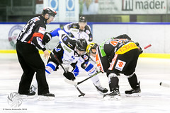 WSV Broncos vs VEU Feldkirch_01 (hockeywords_pictures) Tags: alpshl fbiveufeldkirch feldkirch wsvsterzingbroncosweihenstephan broncossterzing hockey alpshockeyleague season20162017