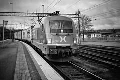 HectorRail, Hallsberg 2012-02-21 (Michael Erhardsson) Tags: br 242 hectorrail godstg hallsberg 2012 svartvitt