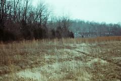 Toledo Family Slide 016.jpg (The Digital Shoebox) Tags: 1960 35mm ebay extachrometransparency madeinusa men november ohio original outside slides toledo kodak woodedfield memories found family