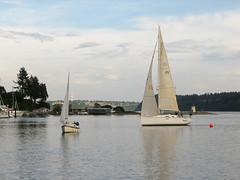 IMG_6431SMordue (Gig Harbor Yacht Club) Tags: 3 race may schultz sheila 52115 mordue ghyc