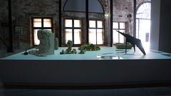 sean lynch irish pavillion (MANYBITS) Tags: art 2015 biennaledivenezia venicebiennial
