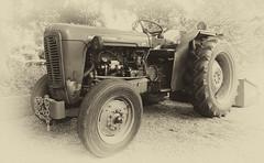 366/204 22Jul16 Fergie (Romeo Mike Charlie) Tags: masseyferguson 35 tractor vintage 1950s farmmachinery