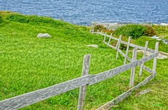 Fence to the Ocean (photo fiddler) Tags: peggyscove atlantic fence july 2016