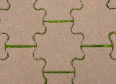 Pavement Jigsaw With Moss (mikecogh) Tags: pavement pavers shapes jigsaw moss cracks footpath klemzig