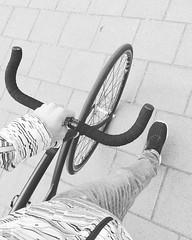 Let's dropbar this beauty... #cyclographics#vanhulsteijn#arnhem#4617#singlespeed#coasterbrake#steelisreal#miche#hplusson#ritchey#sturmeyarcher#michelin#bullhorn#not#a#fixie#fixedgear#fixed#brakesless#bicycle#urban#street#lemuridae#stealth#blackandwhite#bn (graafsten) Tags: blackandwhite moon bike square cycling blackwhite stainlesssteel steel squareformat be handlebar bnw fizik steelisreal bullhornbar iphoneography vanhulsteijn instagramapp bijwoord