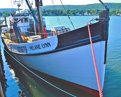 Fishing boat Melanie Lynn docked at Annapolis Royal, Nova Scotia (bluenosersullivan) Tags: atlanticcanada bayoffundy annapolisroyal davesullivan fishing boat woodboat novascotia can