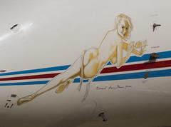 Travel Broadens you (FlyingAnts) Tags: travel broadens you travelbroadensyou n841ws nose art noseart g450 gulfstream