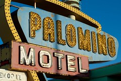 The Palomino (dangr.dave) Tags: tucumcari nm newmexico downtown historic architecture quaycounty route66 palominomotel neon neonsign