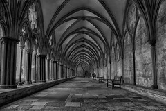 Salisbury cathedral cloister / claustro catedral Salisbury (Luis DLF) Tags: salisbury cathedral claustro cloister visit byn bw adoquin losas arcs arcos perspective uk england