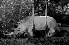 Garden (pjarc) Tags: europe europa italy italia liguria portofino giardino garden scultura sculpture rinoceronte rhinoceros stranezza appeso animale foto photo bw black bianconero camera nikon d200 dx digital nofullframe lens zoom nikkor 18200mm emotion emozione allaperto giugno june 2016