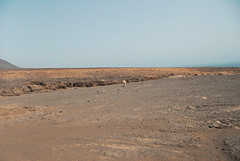 DSC_0071 (RD1630) Tags: fuerteventura summer sunny sun desert islands canary spain jandia nature sky landscape landschaft outside outdoor