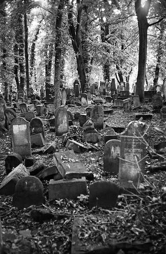 New Jewish Cemetery, Kraków