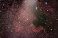 NGC 7000 - North America Nebula (Mike Raggett) Tags: america canon star ic ngc north pelican 71 nebula modded cygnus 7000 5070 avx williamoptics 1100d astrometrydotnet:status=solved asi120mc astrometrydotnet:id=nova1119771