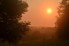 DSC_4353 (lutheranpenguin) Tags: park sunrise kentucky louisville cherokee