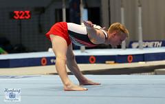 Deutsche Meisterschaft im Kunstturnen 2016  (252) (Enjoy my pixel.... :-)) Tags: sport turnen alsterdorfersporthalle hamburg 2016 deutschemeisterschaft dtb gymnastik gymnastic deutschland
