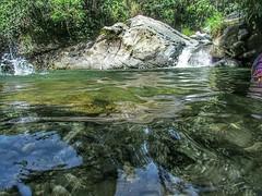 . @Regrann from @olivera_consta - Junín, Tolima, Colombia. No hay nada mejor que bañarse en estas aguas frías y cristalinas...! #enmicolombia #loves_americas #loves_colombia #galeriaco #ig_worldclub #igerscolombia #best_photogram #nature #tolima #colombia (EnMiColombia.com) Tags: foto regrann from oliveraconsta junín tolima colombia no hay nada mejor que bañarse en estas aguas frías y cristalinas lovesamericas lovescolombia galeriaco igworldclub igerscolombia bestphotogram nature colombiahd colombianiando colombiafolklore colombiaestrella colombiagreatshots colombiagrafia colombiastreetphoto icunatureperfectday icucolombia landscapephotography river igglobalclub micolombiaoficial mitolimaoficial igcolombia